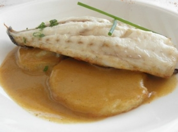 Gilt-head (sea) bream